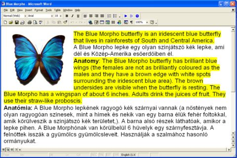 Переводчик MorphoWord Office Translator венгерского